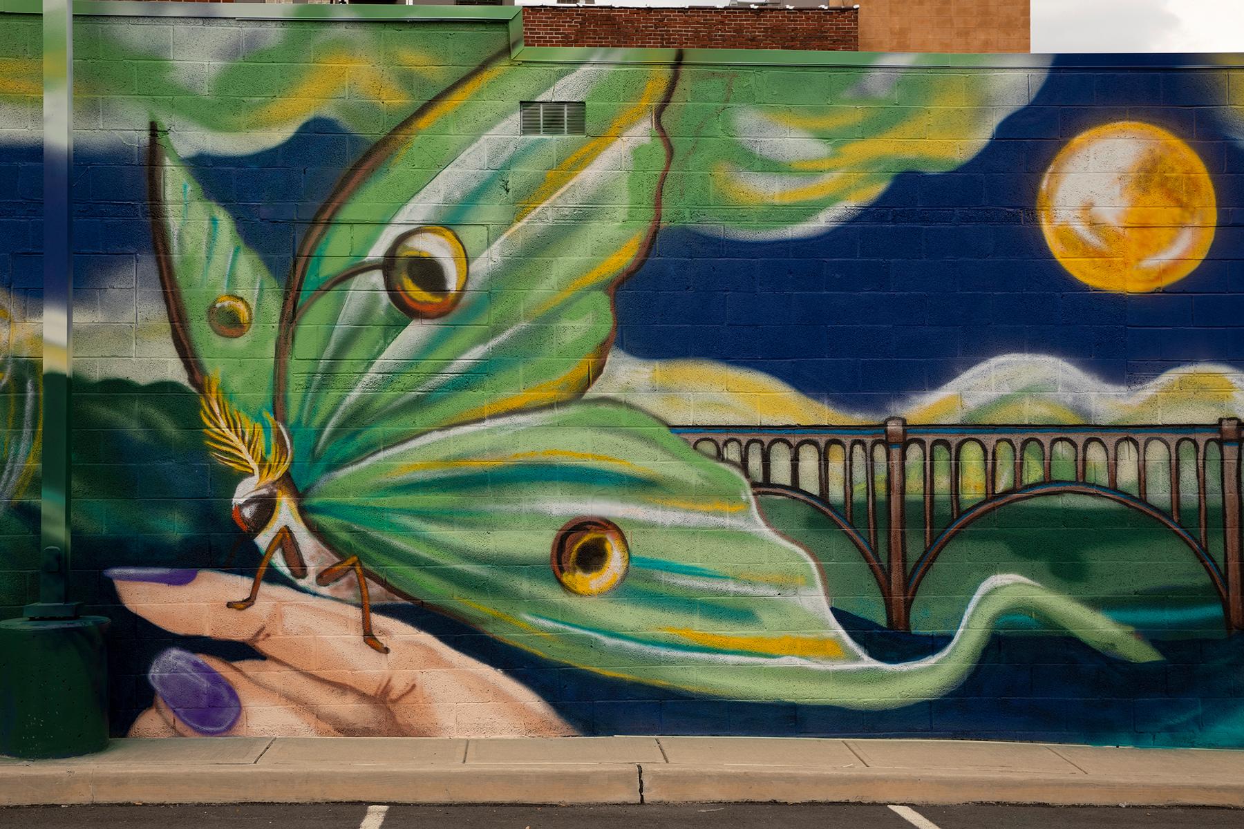 Luna Moth Mural